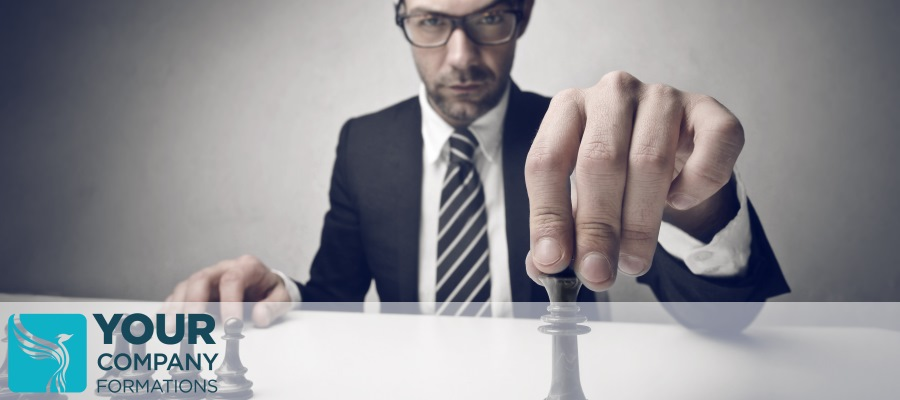 What Is the Role of a Company Director?